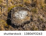 stack of felled trees in the... | Shutterstock . vector #1380693263
