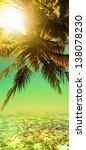 tropical sunset. vertical... | Shutterstock . vector #138078230