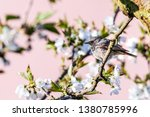 horizontal photo with male... | Shutterstock . vector #1380785996