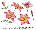 set of watercolor flowers  hand ... | Shutterstock . vector #1380899390