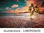 tropical palm tree in the... | Shutterstock . vector #1380903650