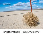 Tumbleweed In Desert On Cracke...