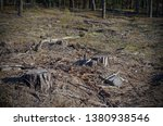 the picture after felling is a... | Shutterstock . vector #1380938546