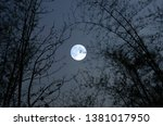 beautiful full moon in bamboo... | Shutterstock . vector #1381017950