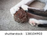 Stock photo cat paw with claws out play toy 138104903