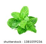 mint leaves isolated on white... | Shutterstock . vector #1381059236