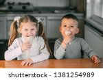kids boy and girl eating ice... | Shutterstock . vector #1381254989