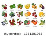 set of fruits  berries and... | Shutterstock .eps vector #1381281083