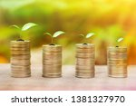 growing money and plant on...   Shutterstock . vector #1381327970