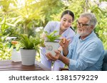 Caregiver help assist senior old man eldery puring water and taking care small tree on table - stock photo
