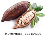 cocoa pod on a white background. | Shutterstock . vector #138164303