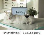 procrastination  delay and... | Shutterstock . vector #1381661093