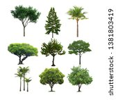 tree cutout photoshop png... | Shutterstock . vector #1381803419