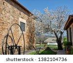 march 25  2019  douro valley ... | Shutterstock . vector #1382104736
