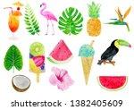 watercolor tropical elements...   Shutterstock . vector #1382405609