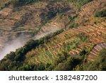 samaba rice terrace fields in... | Shutterstock . vector #1382487200