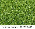 the horizontal natured green... | Shutterstock . vector #1382592653