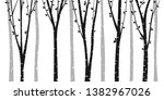 birch or aspen tree forest... | Shutterstock .eps vector #1382967026