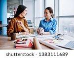 smiling caucasian women... | Shutterstock . vector #1383111689