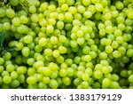 Fresh Fruit Brunch Green Grape...