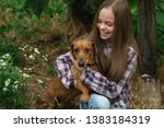 Stock photo little girl playing with her dachshund dog pets care 1383184319
