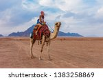 tourist woman in traditional... | Shutterstock . vector #1383258869