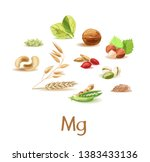 magnesium containing products.... | Shutterstock .eps vector #1383433136