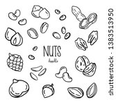 hand drawing styles with nuts.... | Shutterstock .eps vector #1383513950