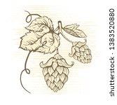 illustration of hops for brewing | Shutterstock . vector #1383520880