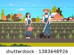 couple farmers planting... | Shutterstock .eps vector #1383648926