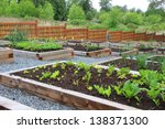 Community Vegetable Garden...