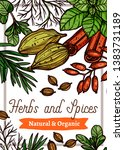 spices and herbs vector hand...   Shutterstock .eps vector #1383731189