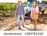 two successful winemakers... | Shutterstock . vector #1383781310