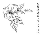 vector vintage set of flowers... | Shutterstock .eps vector #1384143230