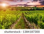 Beautiful Sky Over Vineyards I...