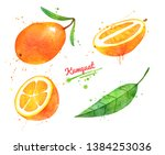 watercolor hand drawn... | Shutterstock . vector #1384253036