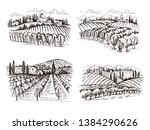 vineyard. old france chateau... | Shutterstock .eps vector #1384290626