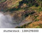 samaba rice terrace fields in... | Shutterstock . vector #1384298300