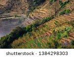 samaba rice terrace fields in... | Shutterstock . vector #1384298303
