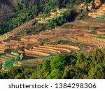 samaba rice terrace fields in... | Shutterstock . vector #1384298306