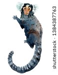 beautiful watercolor monkey.... | Shutterstock . vector #1384387763