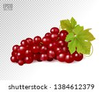 bunch of red grapes with vine... | Shutterstock .eps vector #1384612379