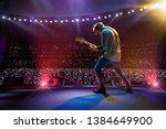 rock star celebrity on the main ... | Shutterstock . vector #1384649900