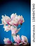 spring beautiful blooming... | Shutterstock . vector #1384847840