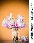 spring beautiful blooming... | Shutterstock . vector #1384847870