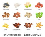 grains and plant seed set with... | Shutterstock .eps vector #1385060423