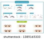 eyelash extensions. guide to...   Shutterstock .eps vector #1385165333