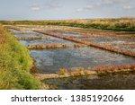 Salt Marshes Of Guerande ...