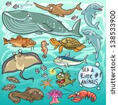 sea and river animals   part 1. ...   Shutterstock .eps vector #138533900