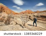 tourist with backpack and... | Shutterstock . vector #1385368229